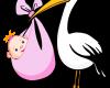 girl-stork-clipart-1.jpg