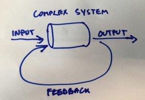 complex-system-feedback