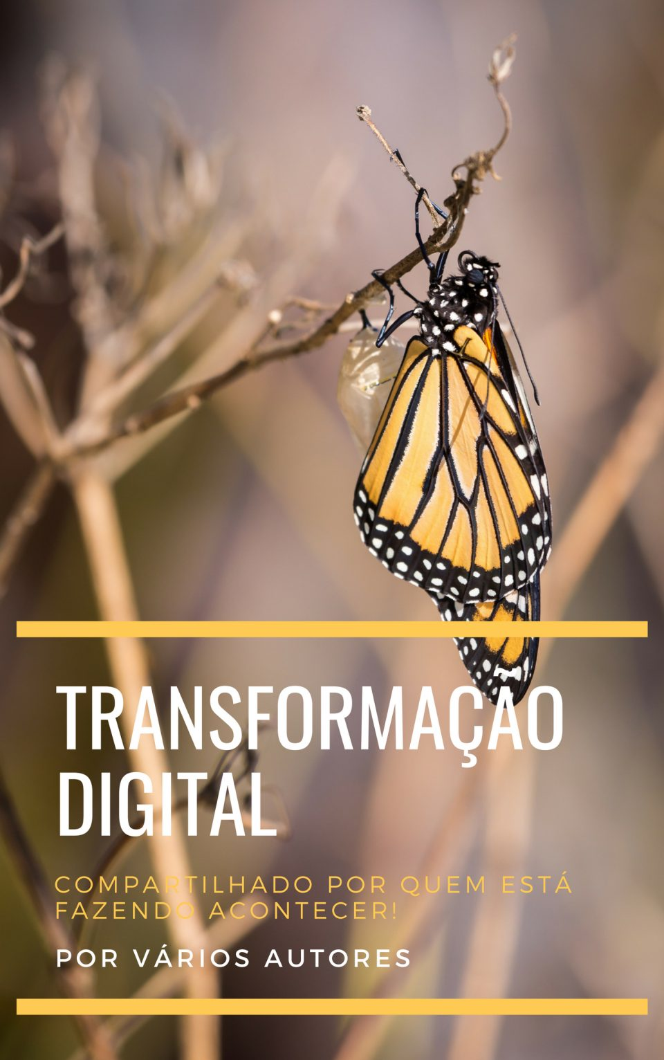 ebook-transformacao-digital
